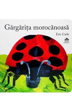 Gargarita morocanoasa